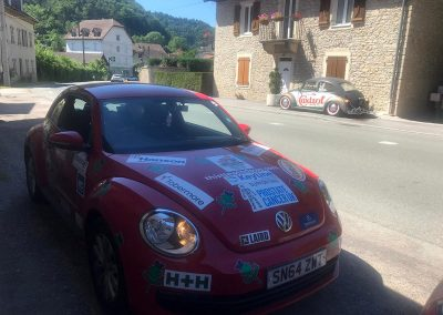 Keyline Rally 2019: The Thistle Beetle meets a relative in Italy