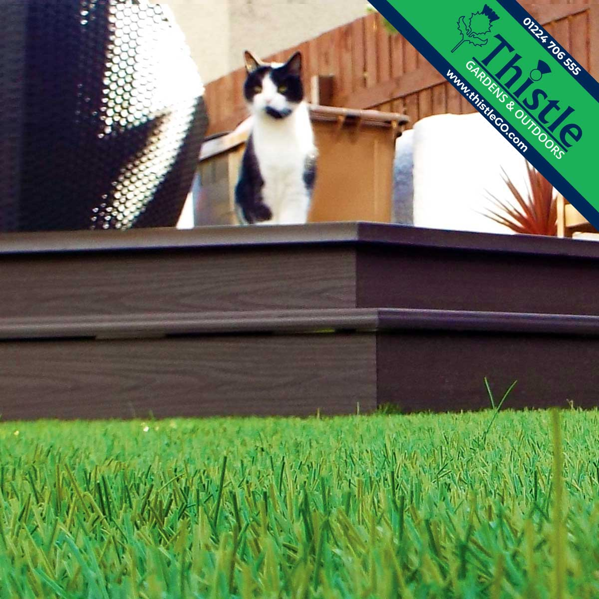 Thistle Artificial Grass Aberdeen, Aberdeenshire & North East Scotland: Pet Friendly Gardens