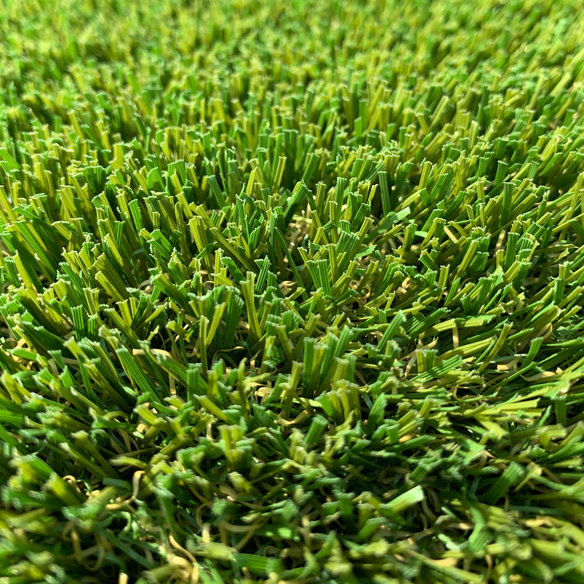 Thistle Artificial Grass: Balmoral 2019 (36mm)