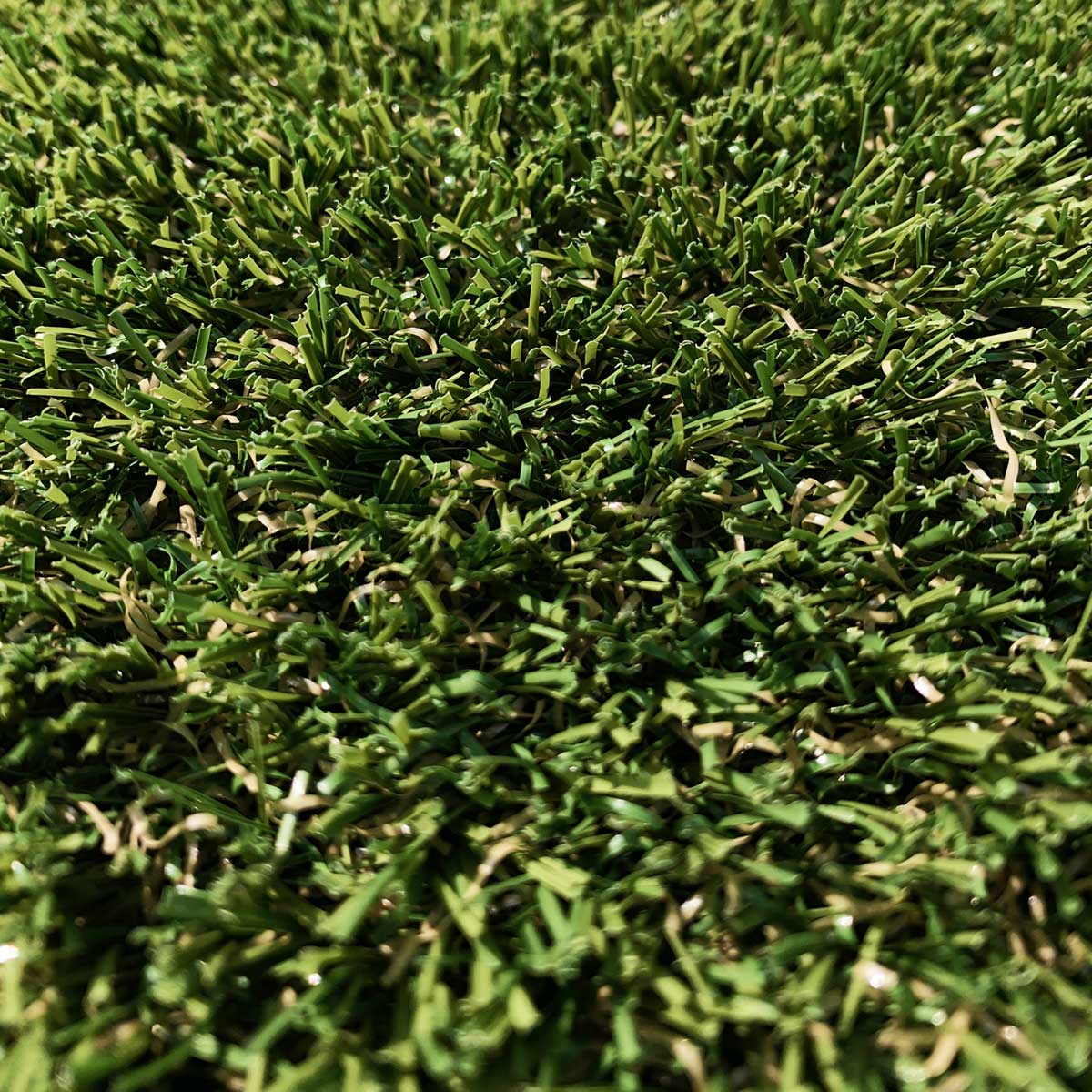 Thistle Artificial Grass: Braemar 2019 (30mm)